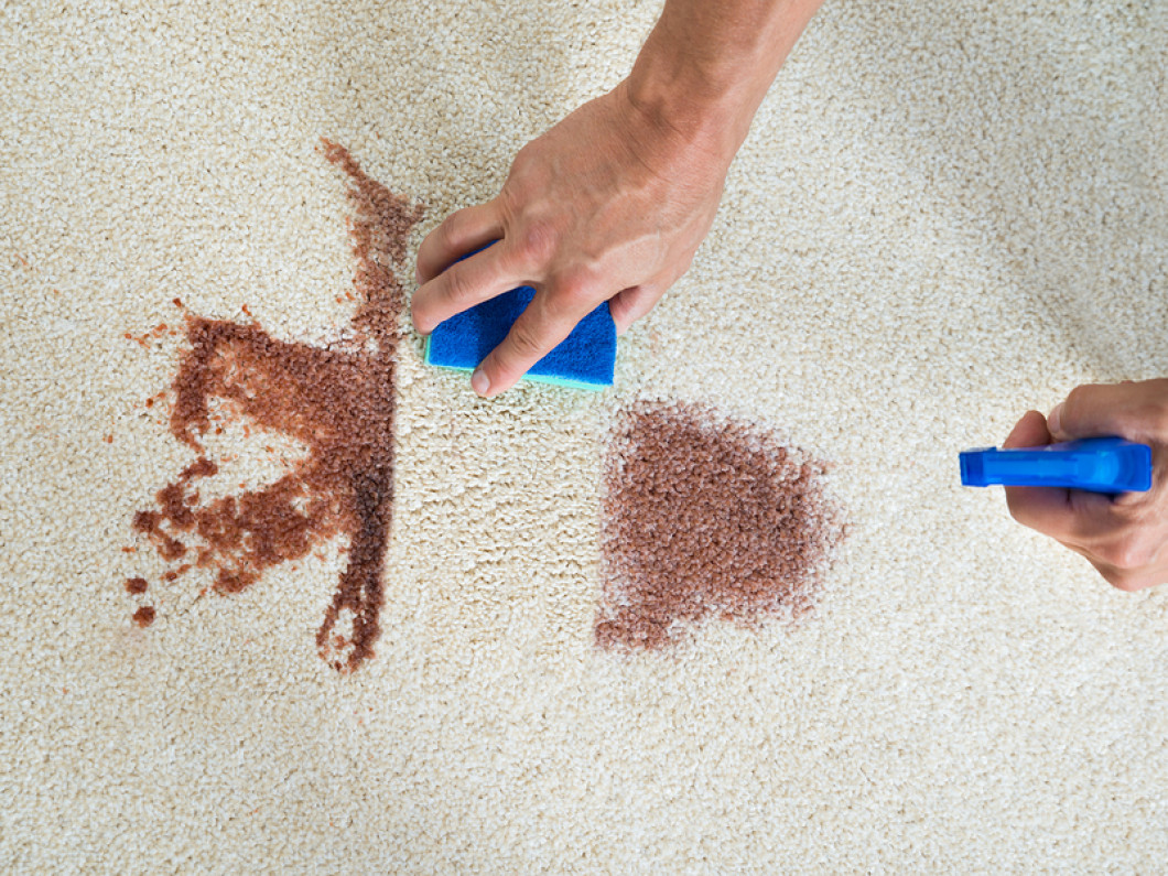We Are Ypsilanti, Saline, & Ann Arbor, Michigan's stain treatment specialists!